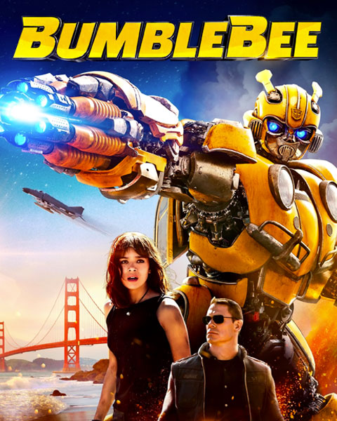 Cover Bumblebee