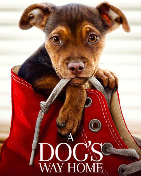 A Dog's Way Home (HD) Vudu / Movies Anywhere Redeem